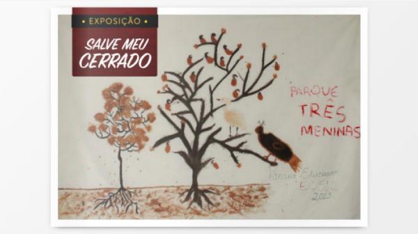 Sema lança catálogo virtual da exposição Salve Meu Cerrado